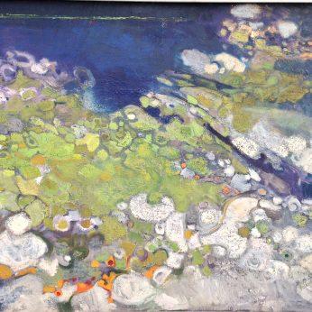 'Lichens'. Oil on Canvas. 61cm x 76cm. POA