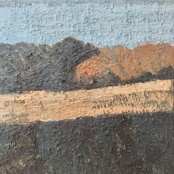 'Landscape - Evening Sun'. Oil on Board. 34cm x 29cm. POA