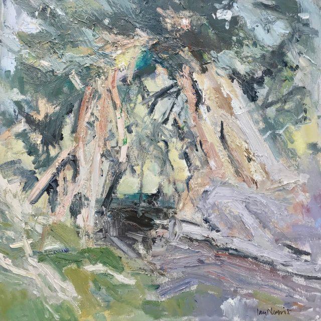 'Borrowdale Yews II (2014). Oil on Board. 60cm x 60cm. POA